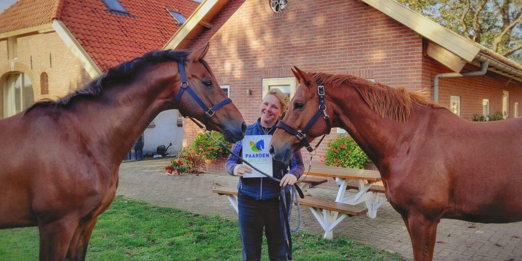 Buitenrijden paard welkom bij vakantie in de Achterhoek BB Het Bospaard